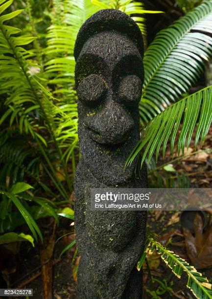 Fern tree grade figure in the jungle Ambrym island Olal Vanuatu on August 30 2007 in Olal Vanuatu