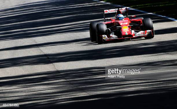 Fernando Alonso of Spain and Ferrari drives during Practice ahead of the F1 Grand Prix of Italy at Autodromo di Monza on September 6 2014 in Monza...