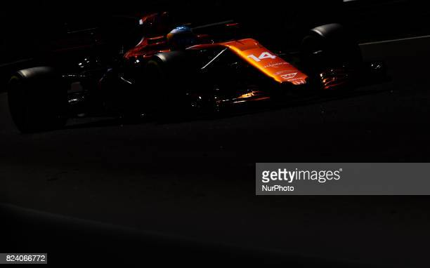 Fernando Alonso of Spain and McLaren Honda F1 Team driver goes during the free practice session at Pirelli Hungarian Formula 1 Grand Prix on Jul 28...