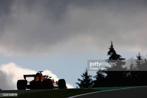 Fernando Alonso of Spain driving the McLaren F1 Team MCL33 Renault on track during final practice for the Formula One Grand Prix of Belgium at...