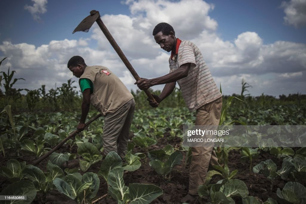 TOPSHOT-MOZAMBIQUE-RELIGION-CARITAS : News Photo