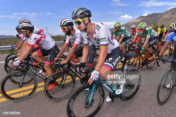 Fernando Gaviria of Colombia and UAE Team Emirates / Peter Sagan of Slovakia and Team Bora-Hansgrohe / during the 37th Tour of San Juan 2019, Stage 4...