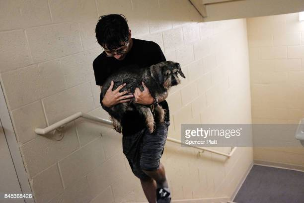 Fernando Oropeza walks up the stairs after taking his dog Simon out for a walk at a hotel on September 10 2017 in Fort Myers Florida With businesses...