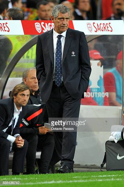 Fernando Santos the coach of Portugal during the International Friendly match between Portugal and Norway at Dragao Stadium on May 29 2016 in Porto...