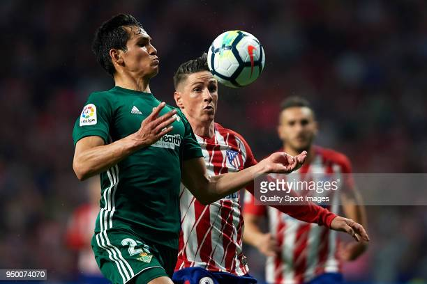 Fernando Torres of Atletico Madrid competes for the ball with Aissa Mandi of Real Betis during the La Liga match between Atletico Madrid and Real...