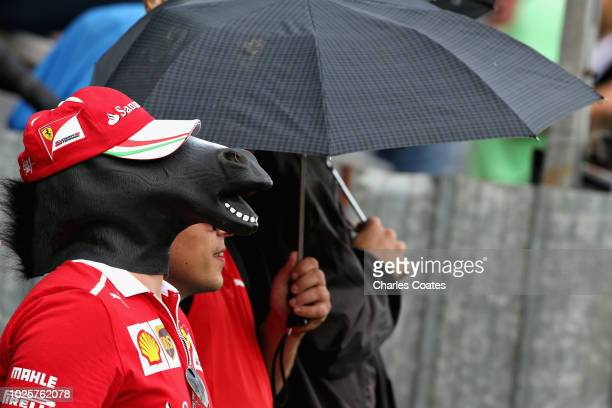Ferrari fan with a horse mask watches the action during qualifying for the Formula One Grand Prix of Italy at Autodromo di Monza on September 1, 2018...