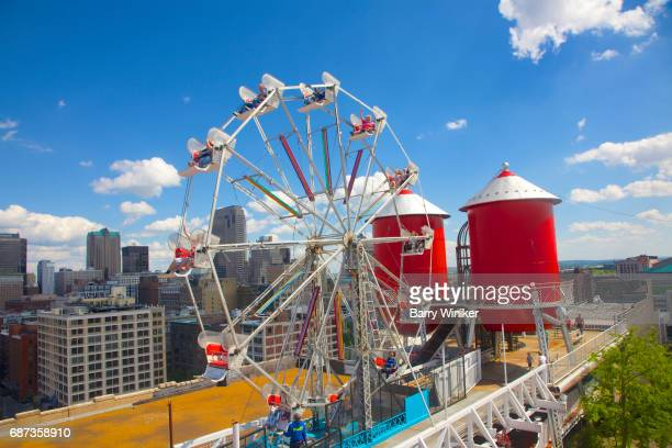 Ferris Wheel and water towers, St. Louis