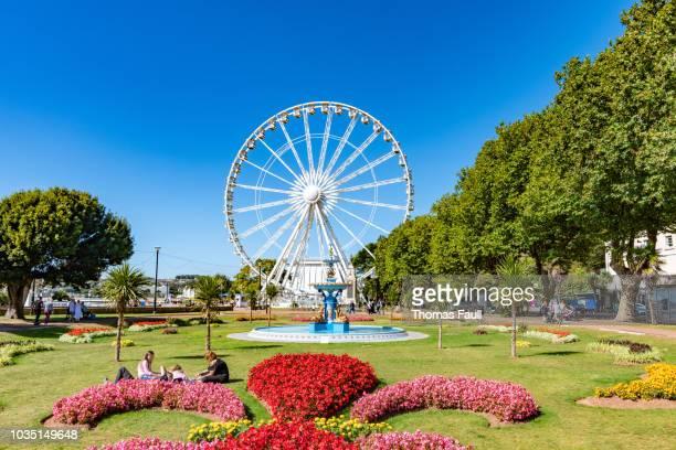 ferris wheel in princess gardens in torquay, devon - torquay,_victoria stock pictures, royalty-free photos & images