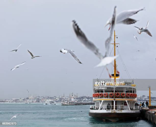 ferry, istanbul,turkey - kadikoy stock photos and pictures