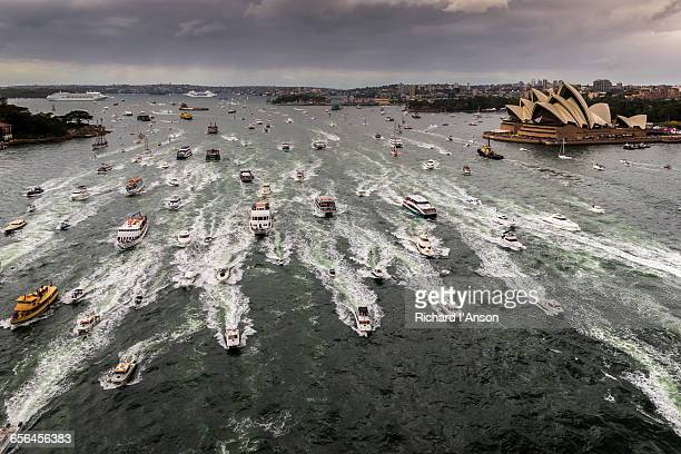 Ferry race on Sydney Harbour on Australia Day