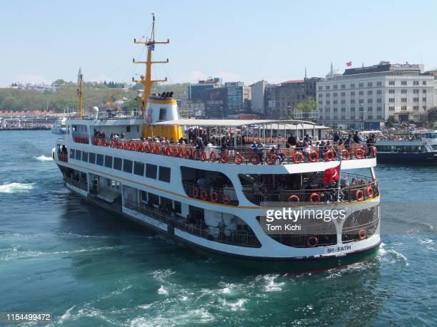 ferry/istanbul, turquia - grupo mediano de animales - fotografias e filmes do acervo