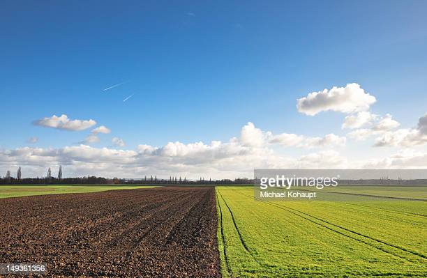 fertile fields before and after - after stock photos and pictures