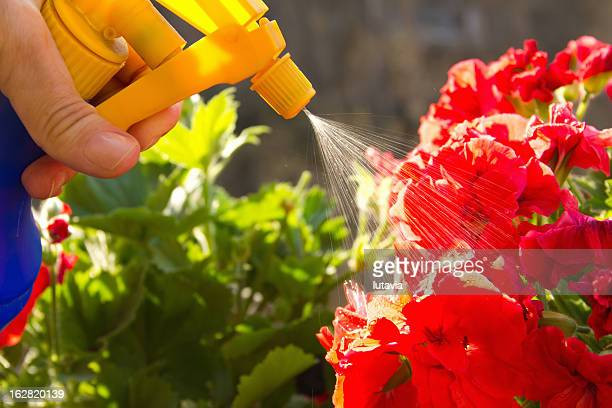 fertilizer - lutavia stock pictures, royalty-free photos & images
