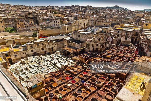 Fes Tannery Overview
