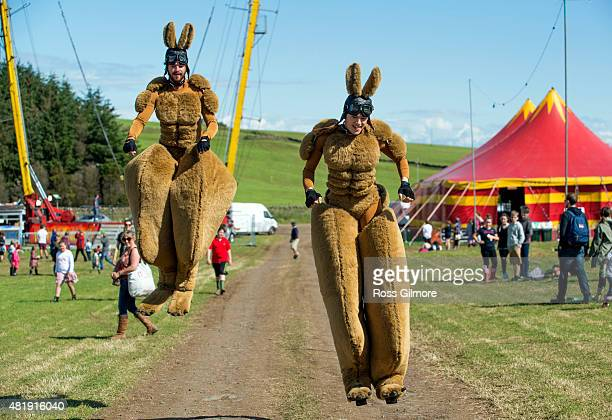 Festival goers dressed as kangeroos during the Wickerman festival at Dundrennan on July 25, 2015 in Dumfries, Scotland.