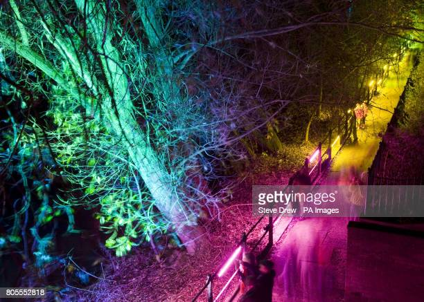 Festival goers take a walk down by the River wear during the Lumiere Festival