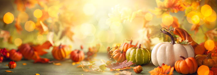 Festive autumn decor from pumpkins, berries and leaves. 1265652136