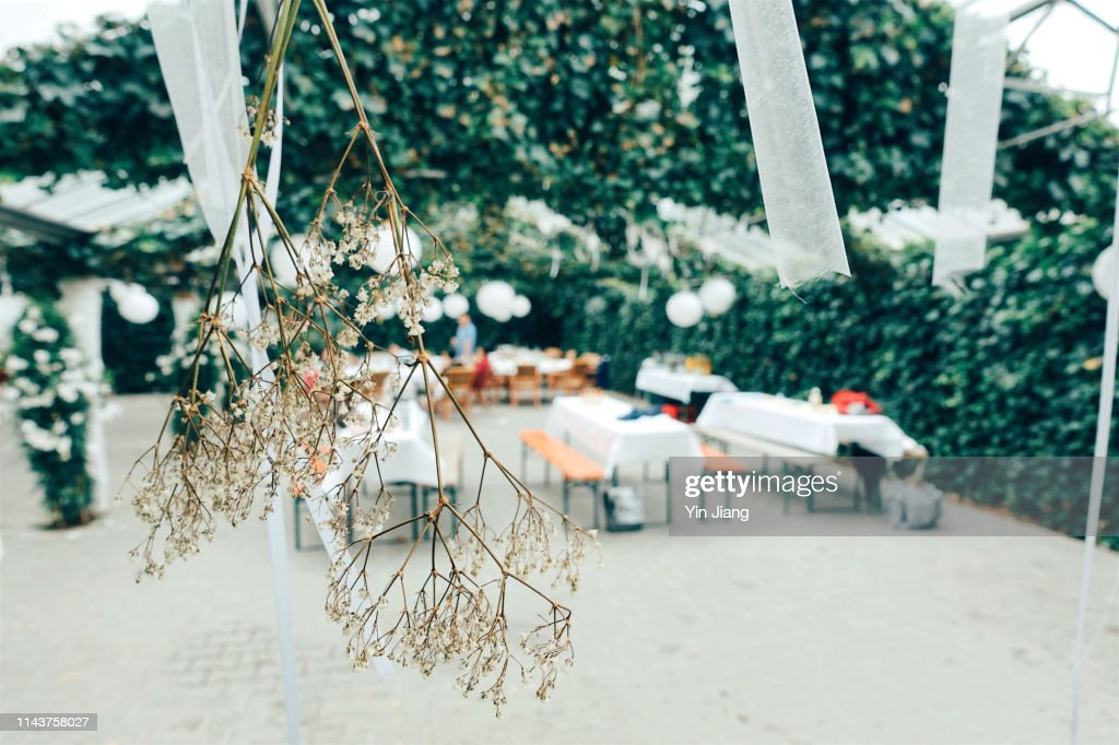 Festive Decorated Table Outdoors And White Flowers in Focus : Stock Photo