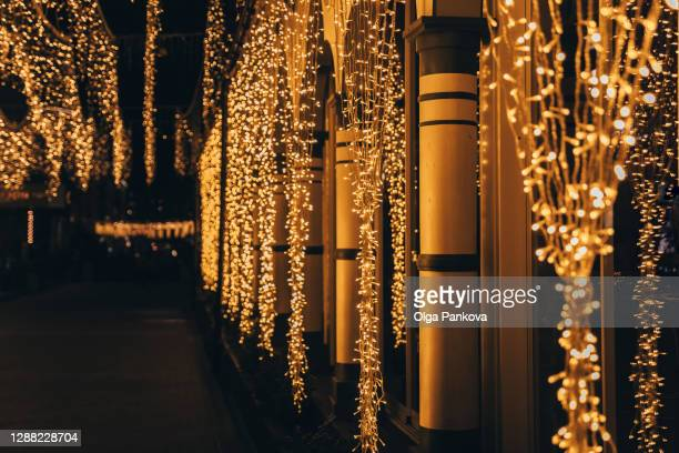 festive decoration of the streets in the dusk. christmas lights. outdoor garlands glow with yellow light. - named animal ストックフォトと画像