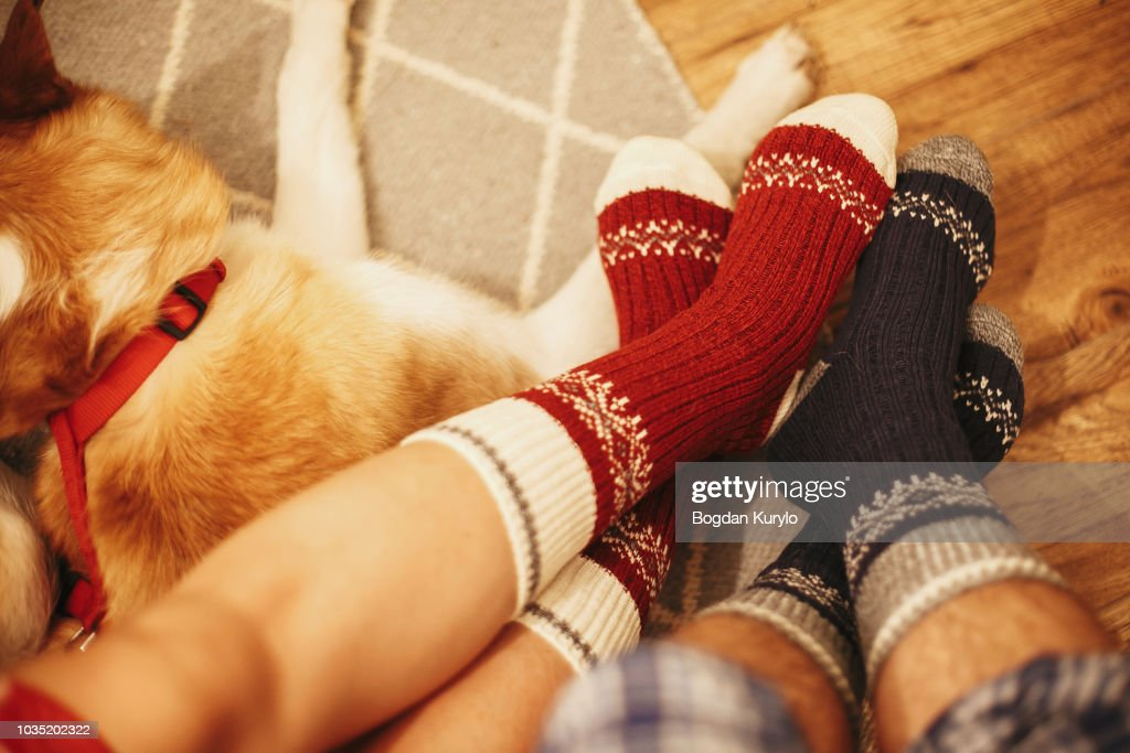 festive socks on couple legs and cute golden dog sitting on floor in festive room. family relax time. cozy winter holidays. warm atmospheric moment. christmas holidays : Stock Photo