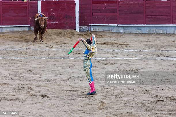 Festividad (festivity) de San Pedro y San Pablo, Corrida de Toros (bullfight)