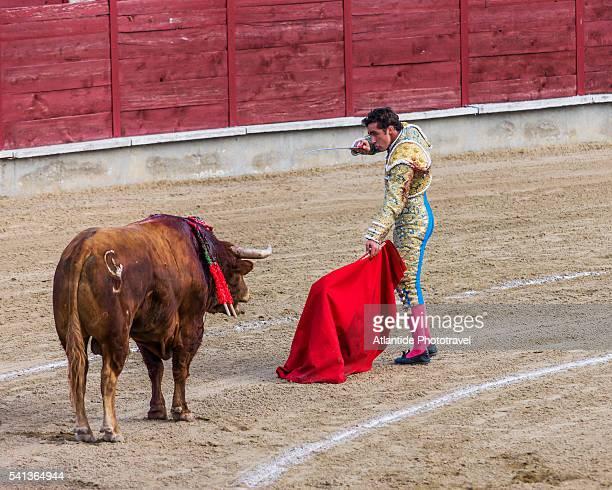 Festividad de San Pedro y San Pablo, Corrida de Toros (bullfight)