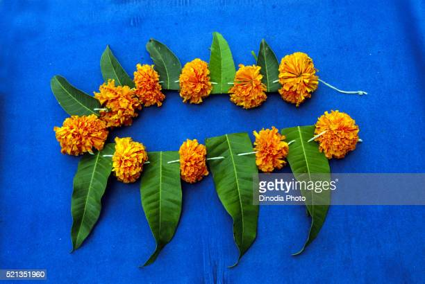 festoon made by marigold flowers and mango leaves pune maharashtra india asia - gudi padwa stock pictures, royalty-free photos & images