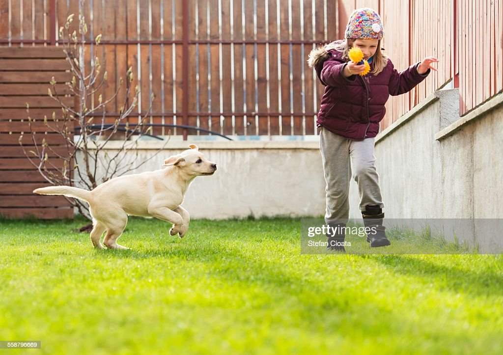Fetch! : Stock Photo