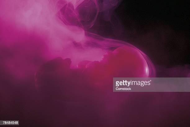 Fetus model with smoke or fog