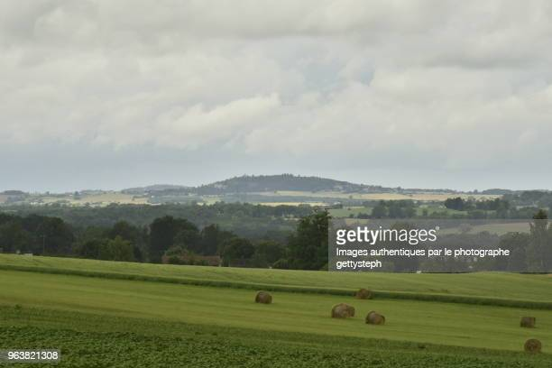 A few cylindric haystack on slope of hill in front of green landscape under rain