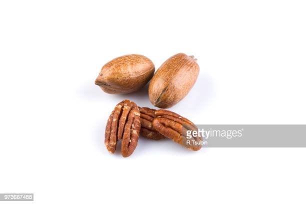 few pecan nuts isolated on white background - organic compound stock photos and pictures