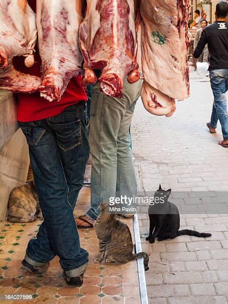 Fez market