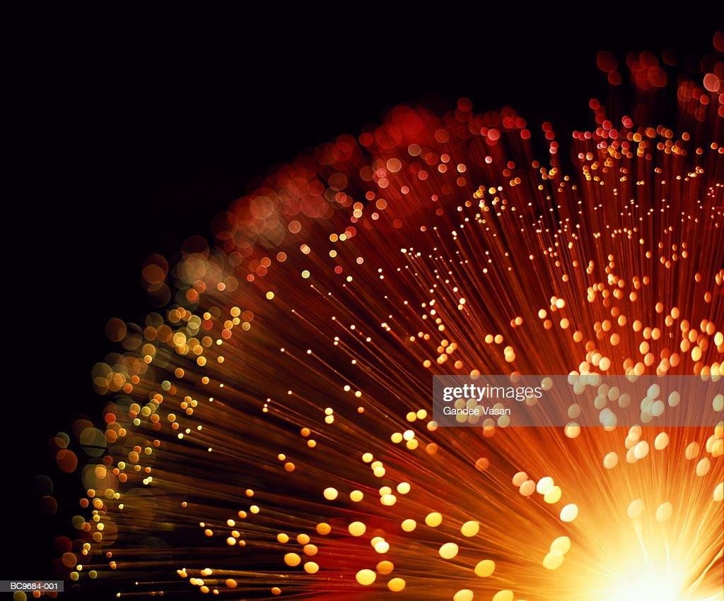 Fibre optic bundle, close-up : Stock Photo
