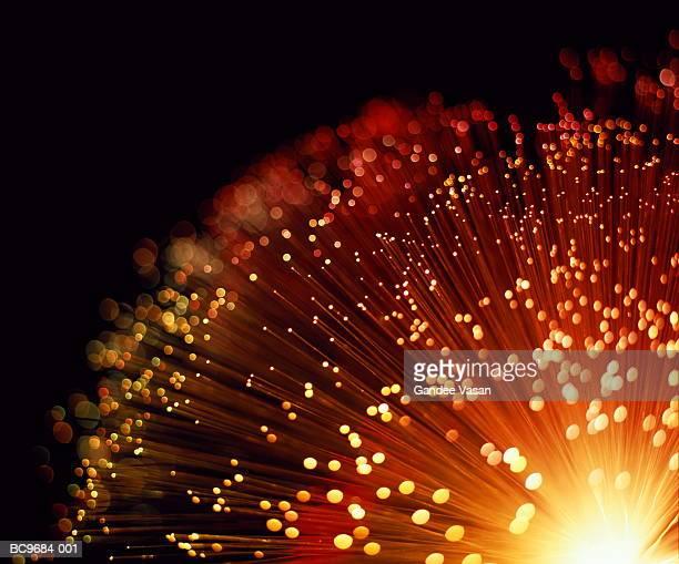 fibre optic bundle, close-up - fibre optic stock pictures, royalty-free photos & images