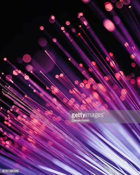 Fibre Optic Wires Illuminated blue and pink