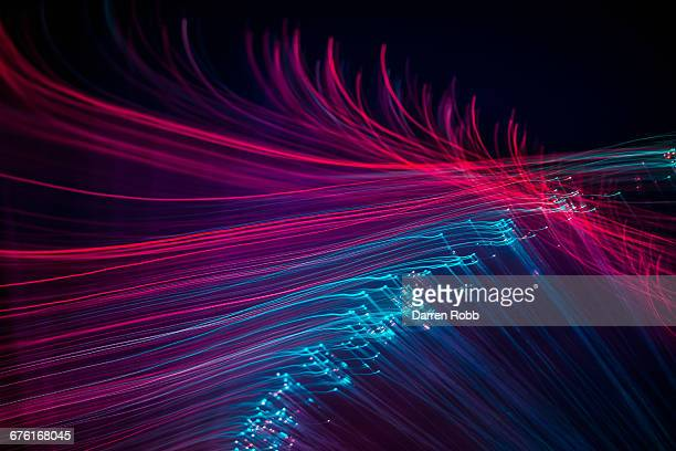 fibre optic wires illuminated blue and pink - image stock pictures, royalty-free photos & images