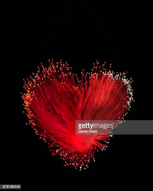 Fibre Optic Wires in the shape of a Love Heart