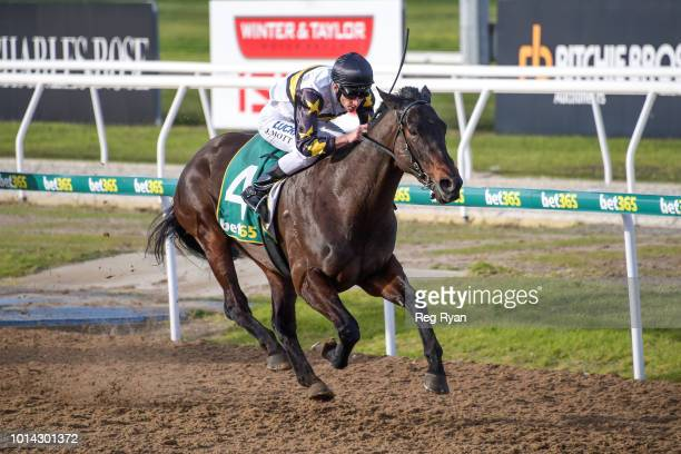 Fica Gal ridden by Jamie Mott wins the Nevan Hunniford BM64 Handicap at Geelong Synthetic Racecourse on August 10 2018 in Geelong Australia