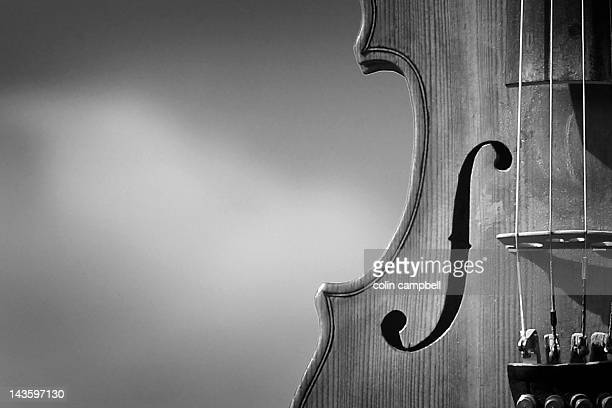 fiddle - stringed instrument stock pictures, royalty-free photos & images