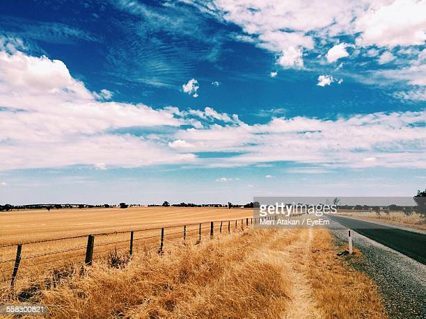 field and country road - country road stock pictures, royalty-free photos & images