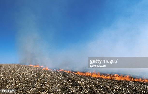 A field burns on a farm in Milnesand, New Mexico.