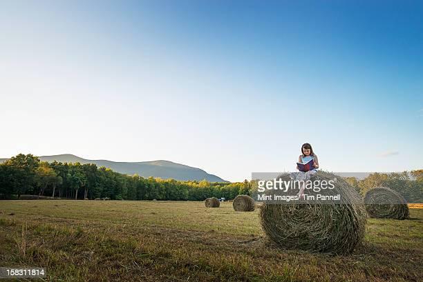 Um campo cheio de alto arredondado Feno fardos, e um jovem