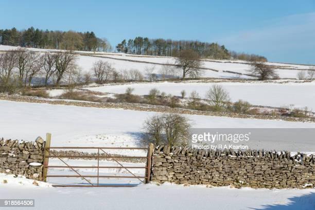 Field gate in a snowy landscape, Peak District, Derbyshire