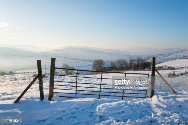 field gate in snowy british countryside - february stock pictures, royalty-free photos & images