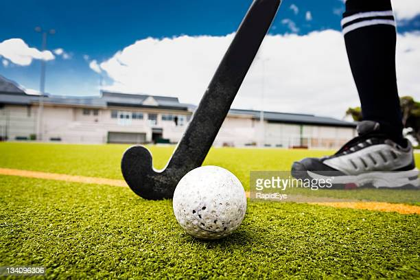field hockey - field hockey stock pictures, royalty-free photos & images
