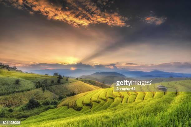 Field in Mae-Jam Village with sunset , Chaingmai Province , Thai