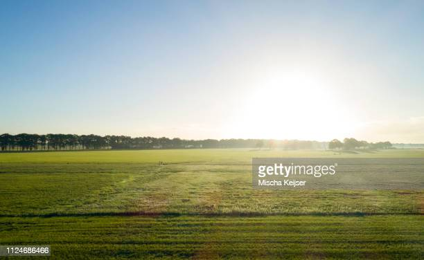 field landscape at sunrise, elevated view - heldere lucht stockfoto's en -beelden