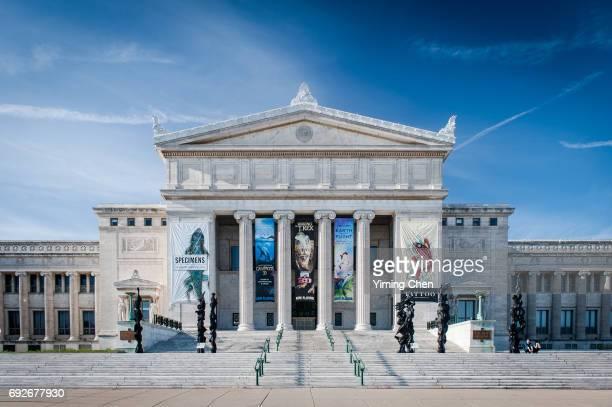 field museum of natural history - museo de historia natural museo fotografías e imágenes de stock