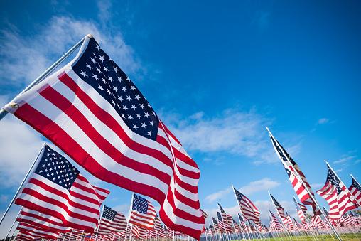 Field of American Flags 546445748