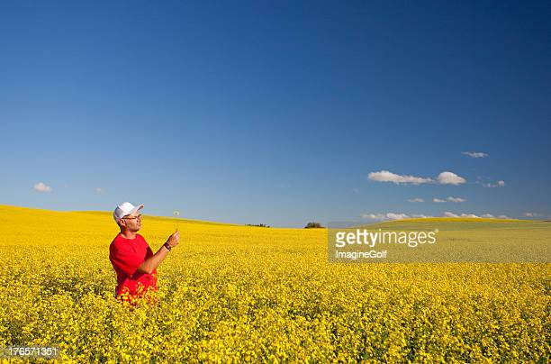field of canola crops with farmer